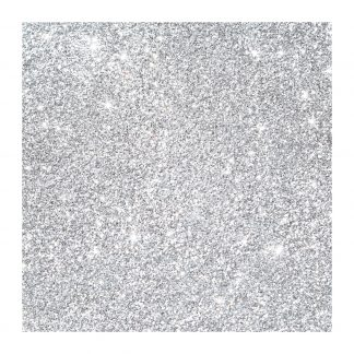 Celeb silver glitter
