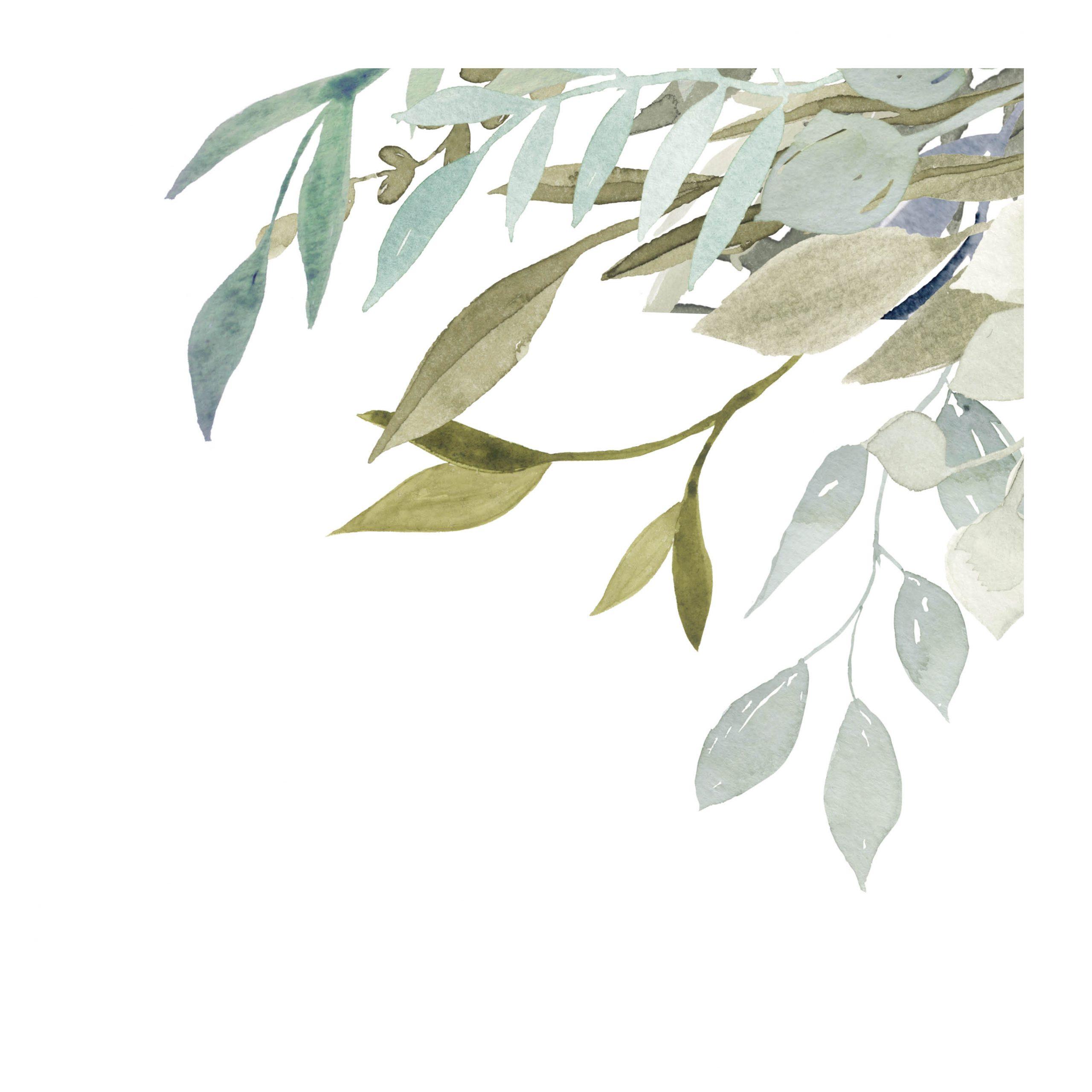 Verdure blue-green