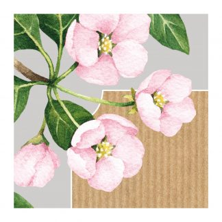 botanicals flowers pinnk3