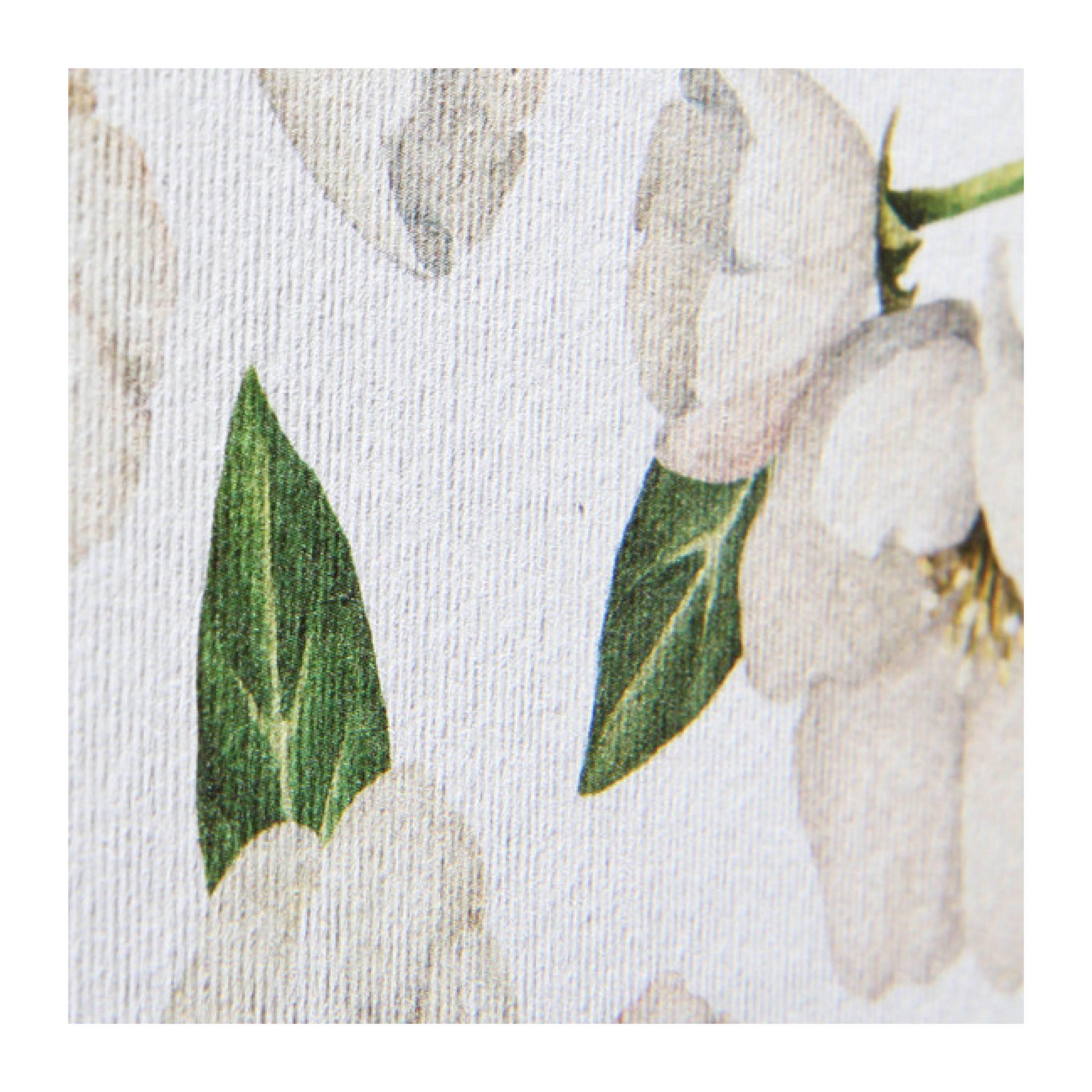 botanicals laid paper
